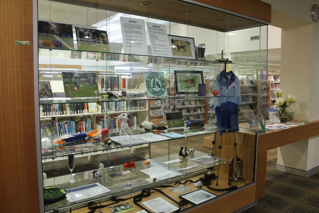 Thuringowa Library Display June 2014